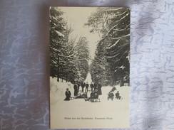 Gruss  Von Der Rodelbahn ; Fasanerie Pless ; R Waiblinger ; Alsace Ou Allemagne? - Autres Communes