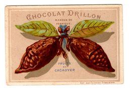 Rare Chromo Testu & Massin Chocolat Drillon, TM 44-7, Fruits De Cacaoyer - Other