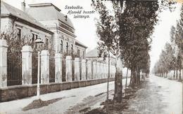 Subotica (Serbie) - Szabadka - Konvéd Huszar Laktanya - Serbie