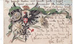 CARD  ALPINI  2° REGGIMENTO AQUILA SABAUDA CORONA REALE STELLE ALPINE  FIRMA TEN. ABBA DUE SCANNER  -FP-V-2-082-27469-70 - Weltkrieg 1914-18