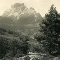 Italy Dolomites Alpes Ampezzan Le Mont Pelmo Ancienne Stereo Photo NPG 1900 - Photos Stéréoscopiques