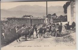 09 - LAVELANET - Le Chevrier - Carte Animée - Lavelanet