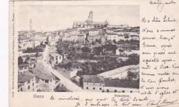 Siena - Panorama (31906) * 25. 8. 1902 - Siena