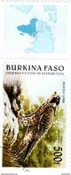 BURKINA - 975** 1996 OISEAUX EN VOIE DE DISPARITION - FAUCON PELERIN  / R 170 - Aquile & Rapaci Diurni