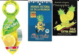 Lot 3 étiquettes Fruits Citron, Ananas Du Costa Rica , Ananas De La Réunion - Fruits & Vegetables