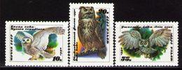 USSR Russia 1990 Owls Birds Animals Animal Fauna Owl Bird Nature Stamps MNH Michel 6063-6065 SG 6117-6119 Sc 5871-5873 - Owls