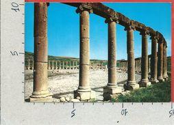 CARTOLINA NV GIORDANIA - JERASH - The Forum - 10 X 15 - Giordania