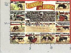 CARTOLINA NV FRANCIA - Diverses Phases D'une Corrida - Multivue - 10 X 15 - Corrida