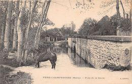 FERE CHAMPENOISE - Pont De La Saule - Fère-Champenoise