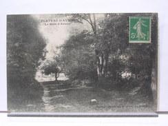 93 - PLATEAU D'AVRON - LE BOIS D'AVRON - 1915 - France