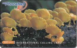 Thailand Phonecard Thaicard CAT Kat. 4736 Thai Mushroom - Thaïlande
