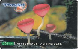 Thailand Phonecard Thaicard CAT Kat. 4733 Thai Mushroom - Thaïlande