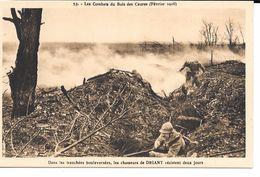 """MILITARIA (14-18) BELLE CPA """"COMBATS DU BOIS DES CAURES (FEVRIER 1916) - Guerre 1914-18"""