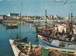 QUIBERON  (56)  Le Port Maria - Quiberon