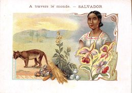 ¤¤  -  SALVADOR   -  Illustrateur  -  A Travers Le Monde   -  ¤¤ - Salvador