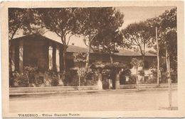 Z3686 Viareggio (Lucca) - Villino Giacomo Puccini / Viaggiata 1929 - Viareggio
