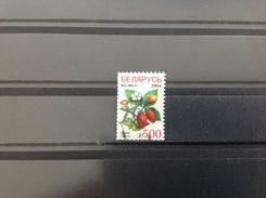 Wit-Rusland / Belarus - Vruchten (500) 2004 - Wit-Rusland