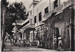 CARTOLINA - POSTCARD - RICCIONE - COLONIA CIF. BERGAMO - Rimini