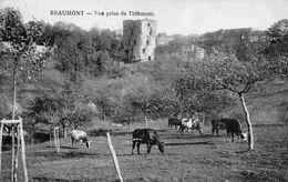 BEAUMONT  -  Vue Prise De Thinmont - Beaumont