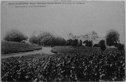 St Estèphe : Chateau Calon-Ségur, Vue Prise Du Vignoble - France