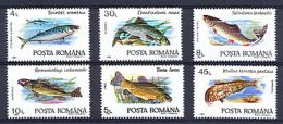 ROUMANIE ROMANA 1992, POISSONS, 6 Valeurs, Neufs / Mint. R203 - Vissen