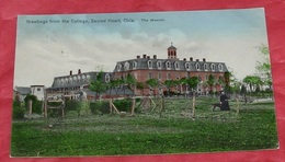 Greetings From College , Sacred Heart , Okla . The Mascot ::::: Animation - Chien    ------------- 428 - Etats-Unis