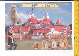 42134 - Cirque Claudio Zavatta - Lens Vendin Le Vieile - Publicités