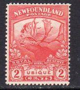 Newfoundland 1919 Newfoundland Contingent 2c Carmine-red RN Reserve, Hinged Mint, SG 131a - 1908-1947