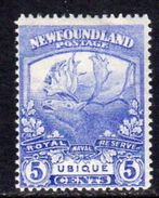 Newfoundland 1919 Newfoundland Contingent 5c Ultramarine RN Reserve, Hinged Mint, SG 134 - 1908-1947