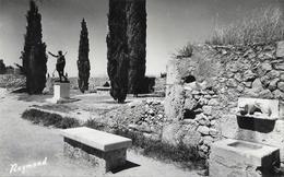 Tarragona - Paseo Arqueologico (Puerta Cicloea) - Lot De 2 Cartes Raymond Non Circulées - Tarragona