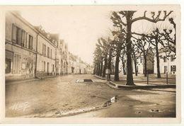 49 - ( Cpsm Pf )  VARENNES SUR LOIRE -  Place Du Jeu De Paume  141 - France