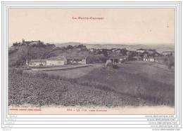 31) Le Pin , Près Rieumes - (Haute Garonne) - France