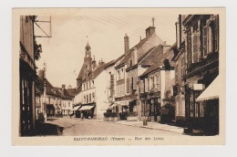 St Fargeau  --  Rue Des Lions - Saint Fargeau
