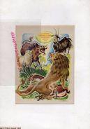 GRAVURE DESSIN DE RAOUL AUGER 1949- LA GENISSE LA CHEVRE ET LA BREBIS EN SOCIETE AVEC LE LION -FABLES DE LA FONTAINE - Prints & Engravings