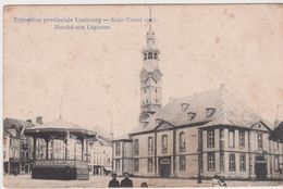 Sint Truiden. 1907. Marché Aux Légumes. - Sint-Truiden
