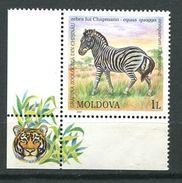 205 MOLDAVIE 2001 - Yvert 344 - Zebre - Neuf ** (MNH) Sans Trace De Charniere - Moldova