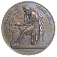 SUISSE / SWITZERLAND - Médaille Du 350ème Anniversaire Du Collège De Genéve (1909) Bronze / 42 Mm - Gettoni E Medaglie