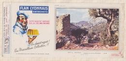 780  BUVARD FLAN LYONNAIS PROVENCE CAMPAGNE AUX ENVIRONS D'OLLIOURES - Zuivel