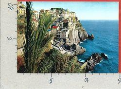 CARTOLINA NV ITALIA - MANAROLA (SP) - Panorama - Cinque Terre - 10 X 15 - La Spezia