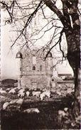 JARD-sur-MER - Abbaye De Notre-Dame De Lieu-Dieu - France