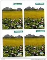 @+ Viet-Nam - 4 Coupons Prépayés Viettel 100 000D - Paysage - Viêt-Nam