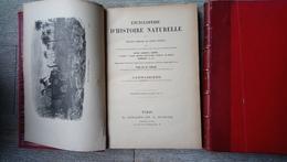 Carnassiers Du Docteur Chenu Encyclopédie D'histoire Naturelle Sciences Animaux Zoologie 2 Tomes - Gastronomie