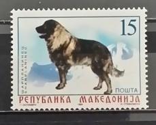 Macedonia, 1999, Mi: 150 (MNH) - Honden