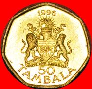 § HEPTAGON: MALAWI ★ 50 TAMBALA 1996! LOW START★ NO RESERVE! - Malawi