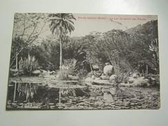 E33  RIO DE JANEIRO BRESIL Le Lac Du Jardin Des Plantes 1908 - Rio De Janeiro