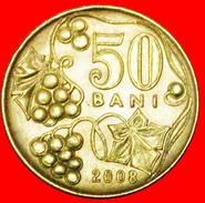 § GRAPE: Moldavia (ex. USSR, Russia) ★ 50 BANS 2008! LOW START★ NO RESERVE! - Moldova