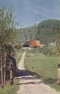 AK Bauernhaus Im Schwarzwald (?) (30048) - Allemagne
