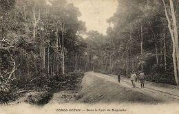 CPA Francais Congo Afrique - Dans La Forét Du Mayombe (86627) - Congo - Brazzaville