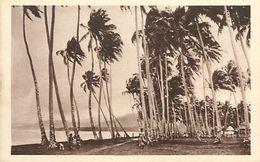 A-17-8749 :  SAMOA - Samoa Américaine