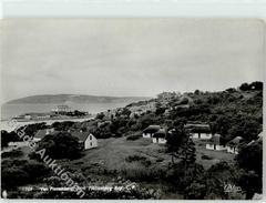 51632203 - Plettenberg Bay - Südafrika